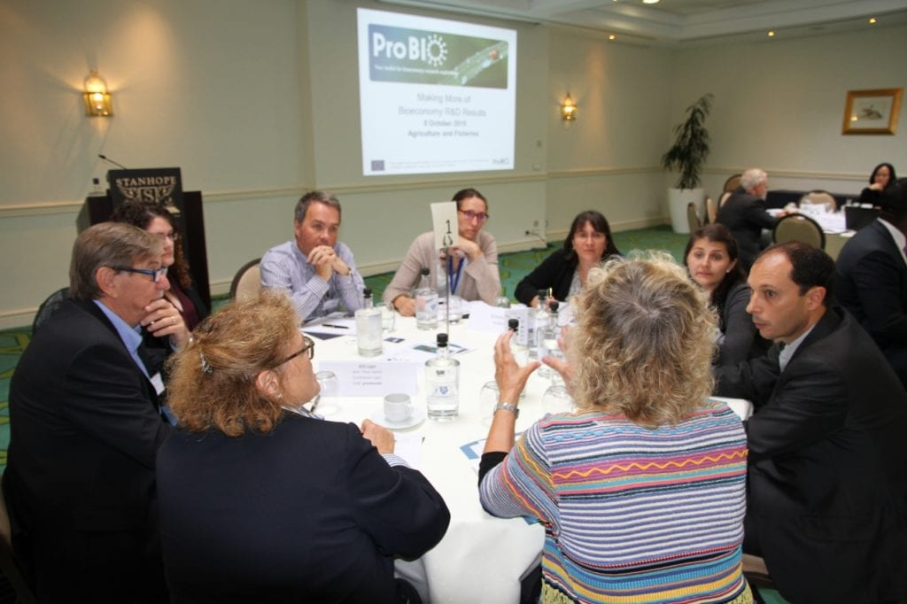 Participants generate and share ideas during a 'knowledge exchange' session