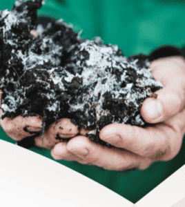 A novel biorefinery concept for mushroom compost – BIOrescue